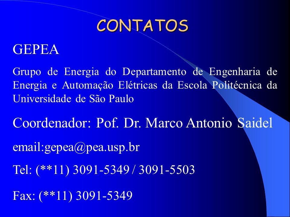 CONTATOS GEPEA Grupo de Energia do Departamento de Engenharia de Energia e Automação Elétricas da Escola Politécnica da Universidade de São Paulo Coor