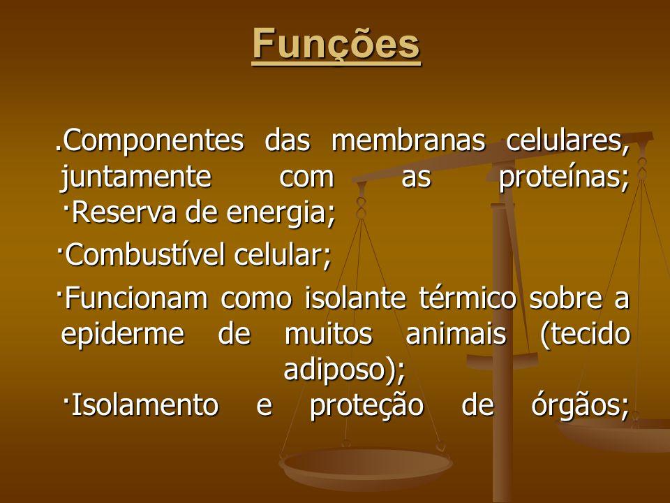 Funções.Componentes das membranas celulares, juntamente com as proteínas; ·Reserva de energia;.Componentes das membranas celulares, juntamente com as proteínas; ·Reserva de energia; ·Combustível celular; ·Combustível celular; ·Funcionam como isolante térmico sobre a epiderme de muitos animais (tecido adiposo); ·Isolamento e proteção de órgãos; ·Funcionam como isolante térmico sobre a epiderme de muitos animais (tecido adiposo); ·Isolamento e proteção de órgãos;