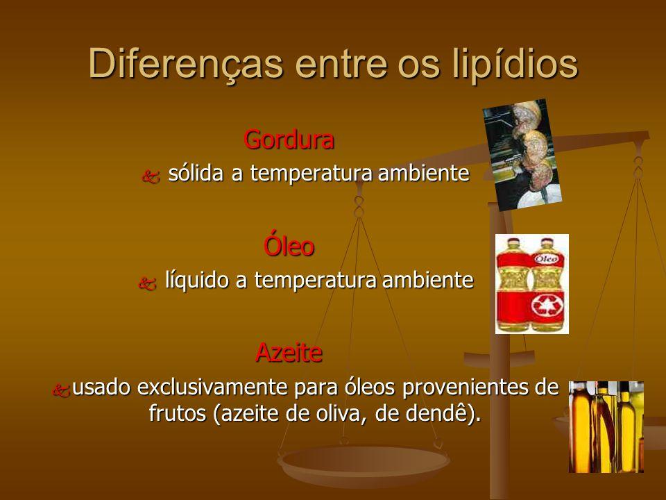 Diferenças entre os lipídios Gordura k sólida a temperatura ambiente Óleo k líquido a temperatura ambiente Azeite k usado exclusivamente para óleos provenientes de frutos (azeite de oliva, de dendê).