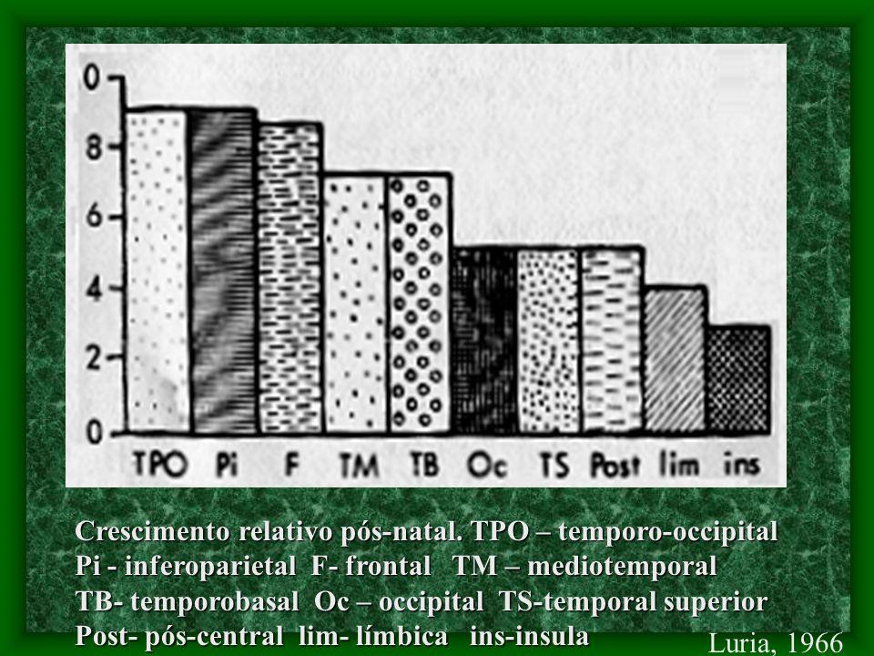 Crescimento relativo pós-natal.
