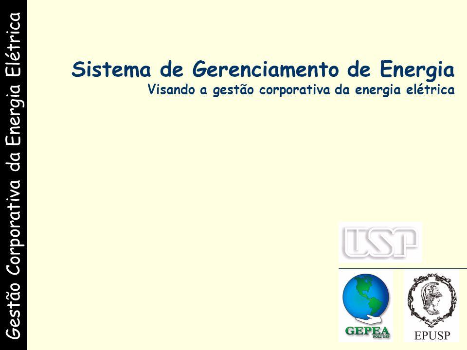 Gestão Corporativa da Energia Elétrica.