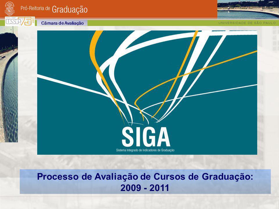 Etapas do Processo 2ª Etapa (2009 /2010) Implementação e Retroalimentação do Processo de Avaliação Avaliação dos Cursos pelas CGs (ou CoCs), inseridas no contexto de implementação e refinamento do processo Análise do Processo de Acompanhamento de Curso, baseado no Plano de Metas e Ações e no conjunto de indicadores estabelecidos Diretrizes e Etapas de Revisão do Projeto Político-Pedagógico (agosto 2009) Fase de Desenvolvimento do Processo: consolidação do Plano de Metas e das Diretrizes de Revisão dos Projetos Político – Pedagógicos: ABRIL 2009 Câmara de Avaliação Relatório de Avaliação do Plano de Metas encaminhado à C.A., contemplando as necessidades para atingir as metas pretendidas (agosto 2009) Sistematização dos Parâmetros de Avaliação Relatório da C.A.