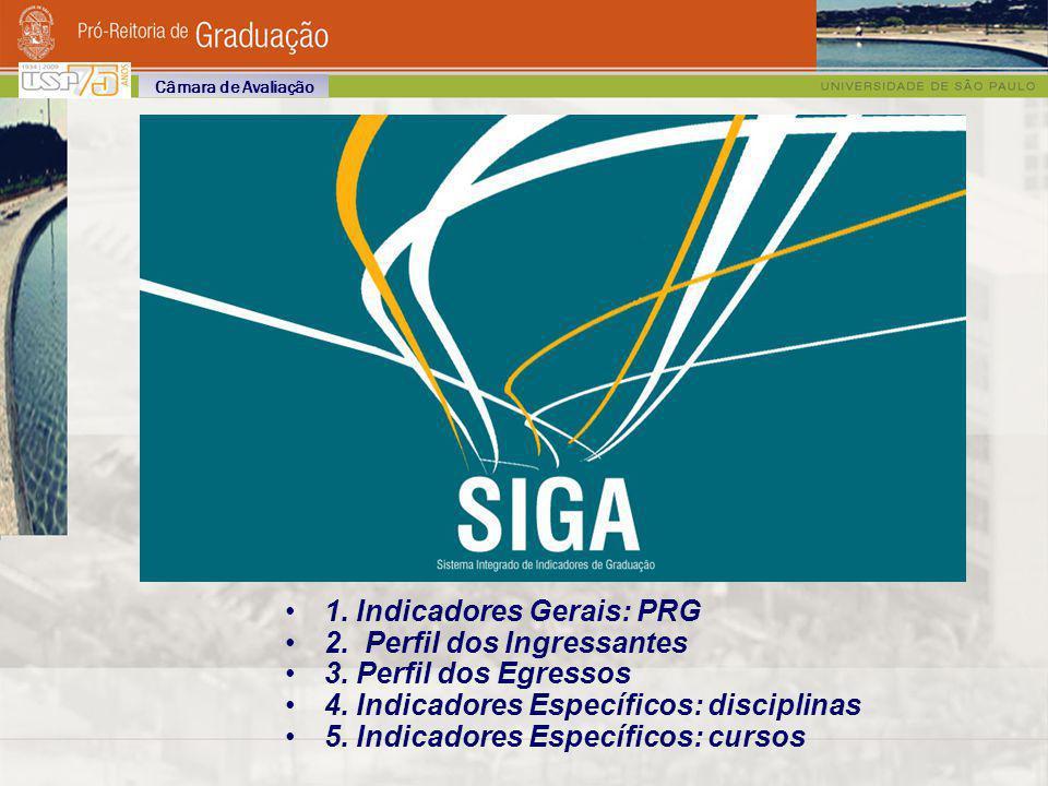 Etapas do Processo 3ª Etapa (2010 /2011) Etapa de Consolidação Repetição de todas as etapas pertinentes.