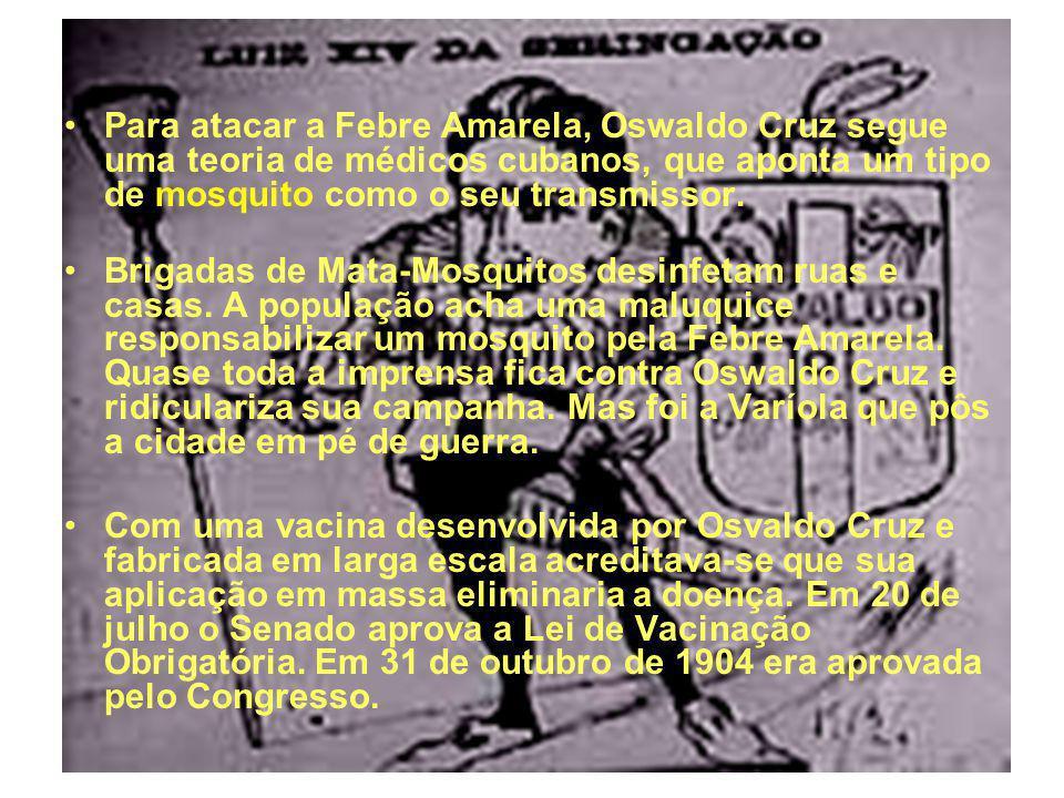 14 Para atacar a Febre Amarela, Oswaldo Cruz segue uma teoria de médicos cubanos, que aponta um tipo de mosquito como o seu transmissor. Brigadas de M