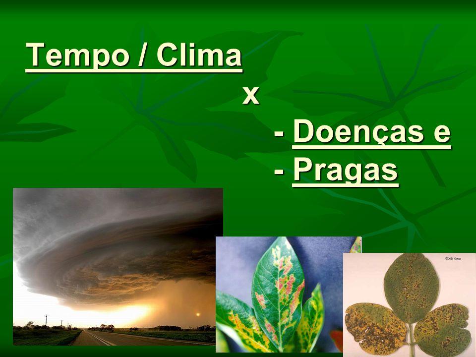 Clima / Tempo x Pragas Climograma de dois locais: Seropédica, RJ ( ) e Cordeirópolis, SP (O).