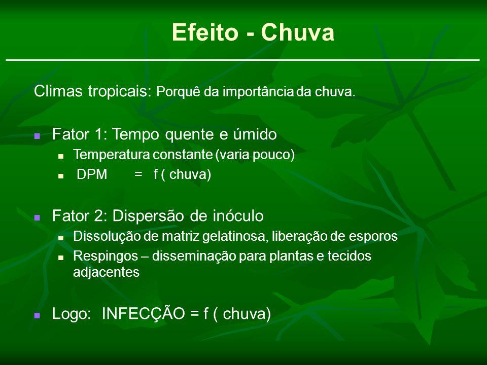 Efeito - Chuva Climas tropicais: Porquê da importância da chuva. Fator 1: Tempo quente e úmido Temperatura constante (varia pouco) DPM = f ( chuva) Fa