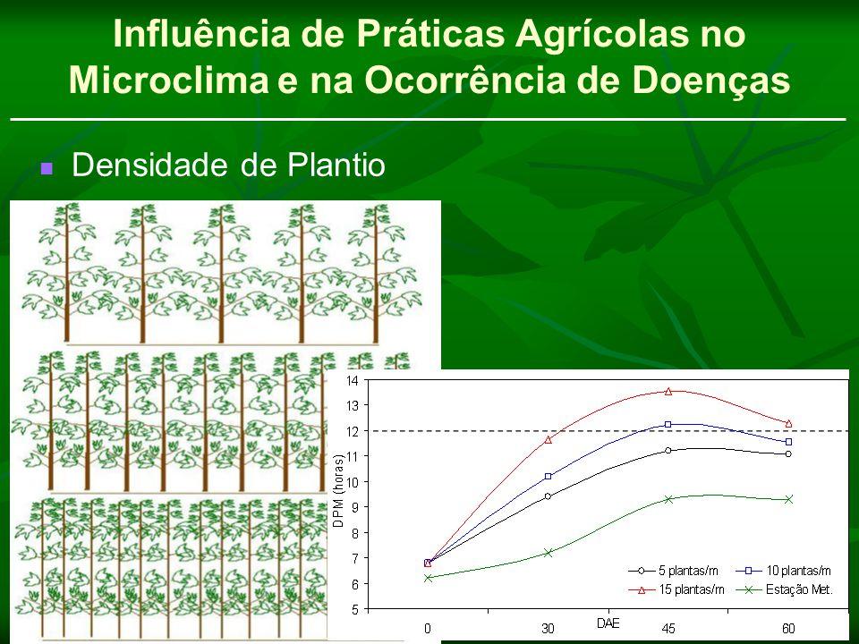 Influência de Práticas Agrícolas no Microclima e na Ocorrência de Doenças Densidade de Plantio