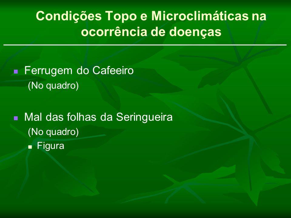 Ferrugem do Cafeeiro (No quadro) Mal das folhas da Seringueira (No quadro) Figura