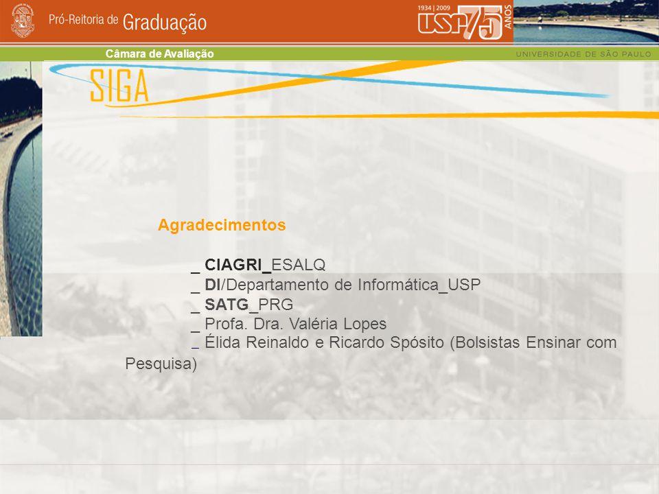 Agradecimentos _ CIAGRI_ESALQ _ DI/Departamento de Informática_USP _ SATG_PRG _ Profa.