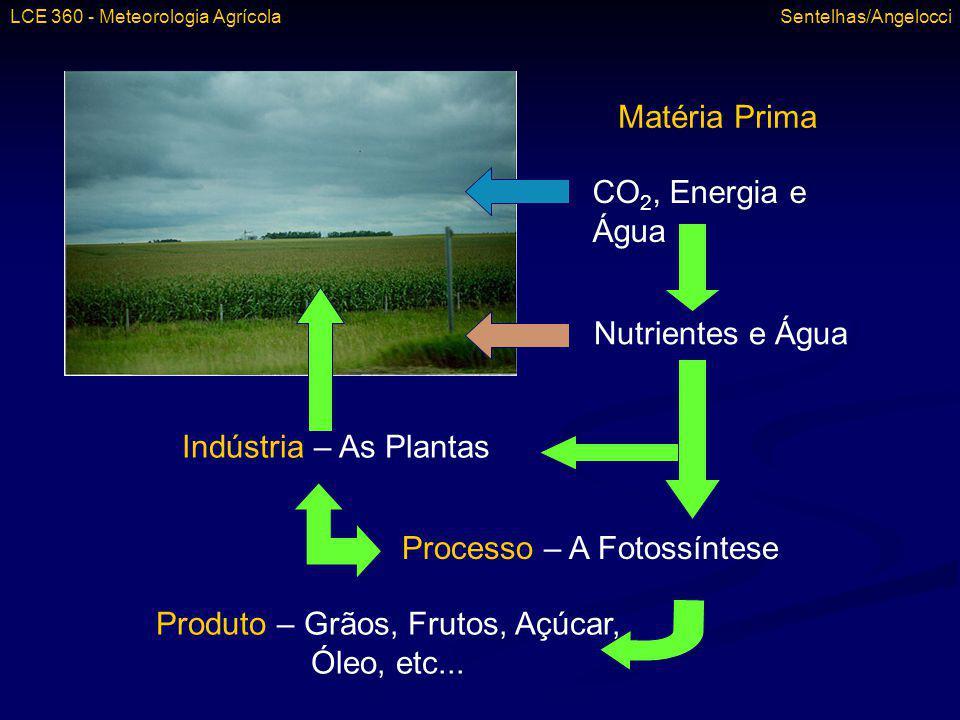 Indústria – As Plantas Processo – A Fotossíntese Matéria Prima CO 2, Energia e Água Nutrientes e Água Produto – Grãos, Frutos, Açúcar, Óleo, etc... LC