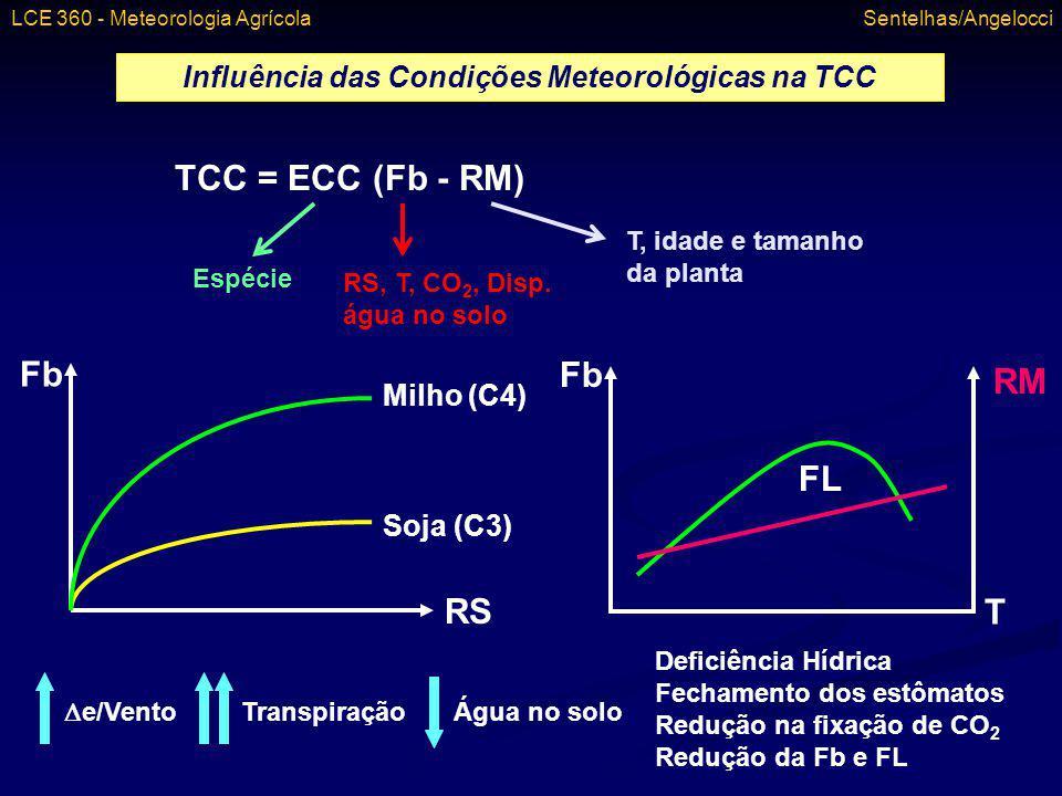Influência das Condições Meteorológicas na TCC TCC = ECC (Fb - RM) Espécie RS, T, CO 2, Disp. água no solo T, idade e tamanho da planta Fb RS Milho (C