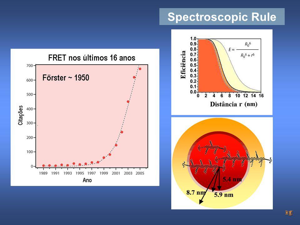 24 Spectroscopic Rule