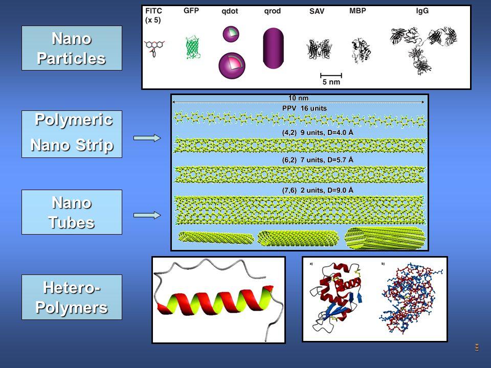 5 Polymeric Nano Strip Nano Tubes Hetero- Polymers Nano Particles