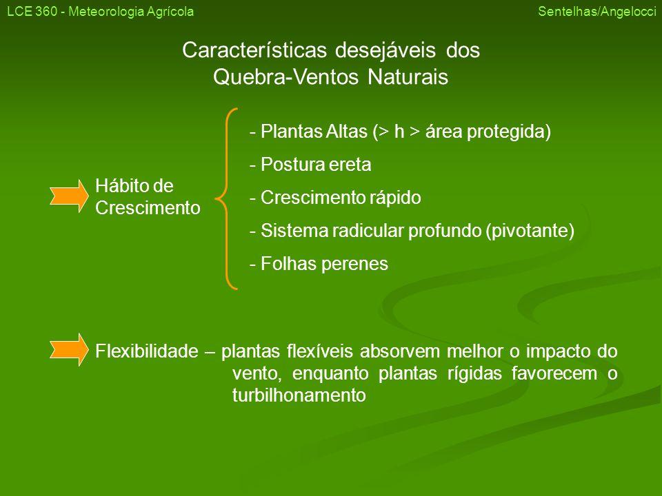 Características desejáveis dos Quebra-Ventos Naturais Hábito de Crescimento - Plantas Altas (> h > área protegida) - Postura ereta - Crescimento rápid