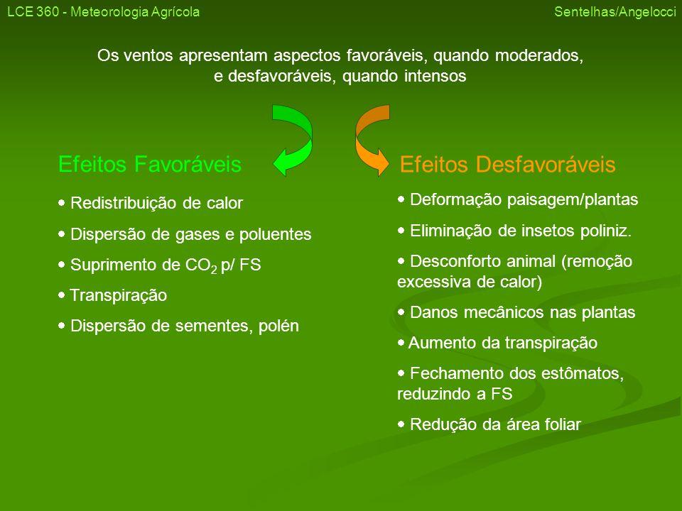 Deformação da paisagem Dano mecânico (acamamento) LCE 360 - Meteorologia Agrícola Sentelhas/Angelocci Banana Cana Direção do Vento
