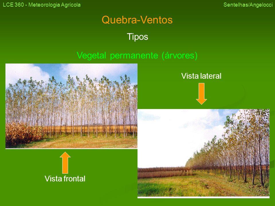 LCE 360 - Meteorologia Agrícola Sentelhas/Angelocci Vegetal permanente (árvores) Quebra vento e cultura anual Quebra vento e cultura perene (citros)