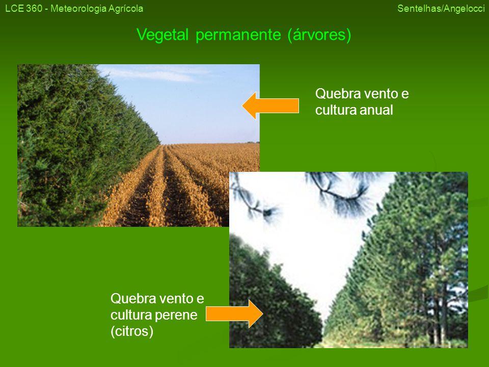 LCE 360 - Meteorologia Agrícola Sentelhas/Angelocci Vegetal permanente (árvores)