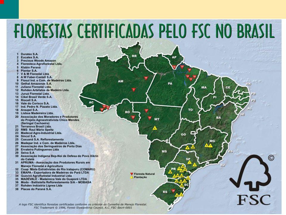 1Cikel Brasil Verde S.A.