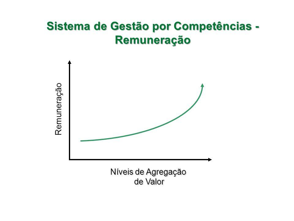 Sistema de Gestão por Competências - Remuneração RemuneraçãoRemuneração Níveis de Agregação de Valor de Valor Níveis de Agregação de Valor de Valor