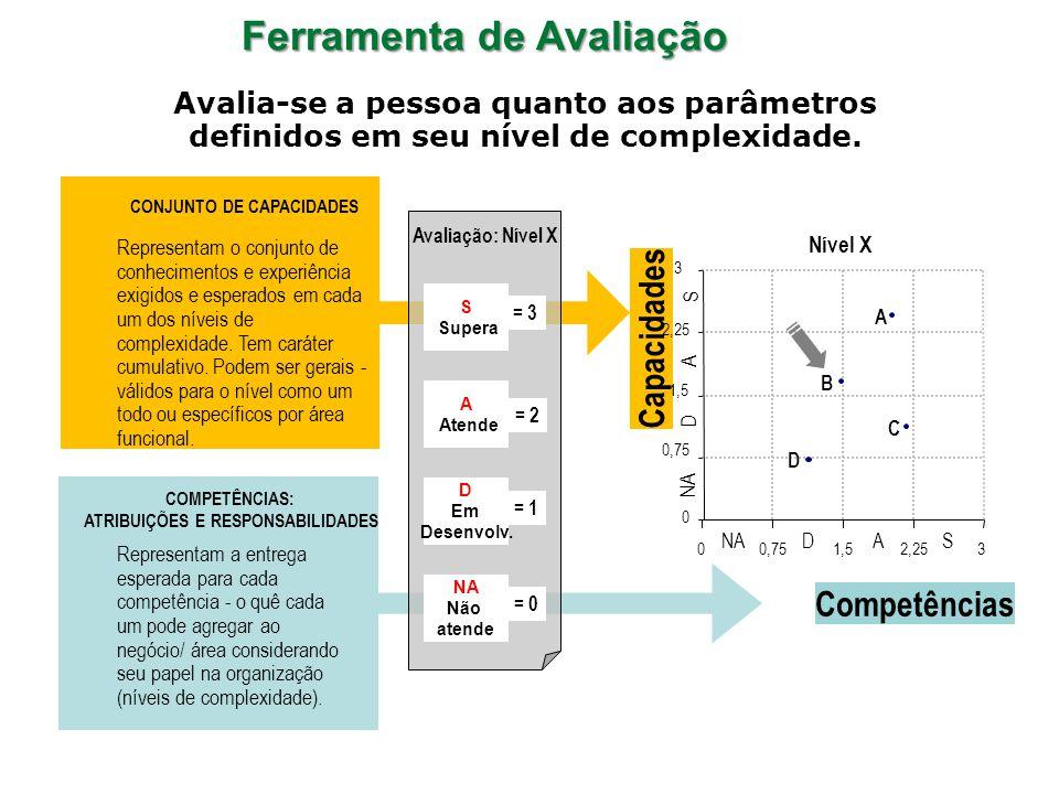 Representam a entrega esperada para cada competência - o quê cada um pode agregar ao negócio/ área considerando seu papel na organização (níveis de complexidade).