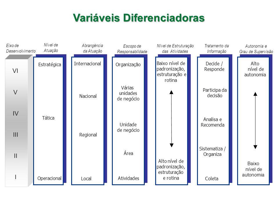 Baixo nível de autonomia Autonomia e Grau de Supervisão Eixo de Desenvolvimento Estratégica Tática Operacional Organização Várias unidades de negócio Unidade de negócio Área Atividades Baixo nível de padronização, estruturação e rotina Alto nível de padronização, estruturação e rotina Decide / Responde Participa da decisão Analisa e Recomenda Sistematiza / Organiza Coleta Nível de Atuação Escopo de Responsabilidade Nível de Estruturação das Atividades Tratamento da Informação Internacional Nacional Regional Local Abrangência da Atuação Baixo nível de autonomia Baixo nível de autonomia Alto nível de autonomia I II III IV V VI Variáveis Diferenciadoras