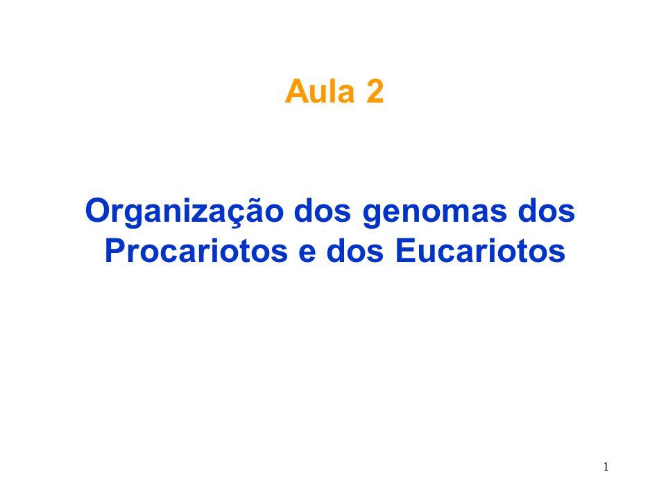 1 Aula 2 Organização dos genomas dos Procariotos e dos Eucariotos