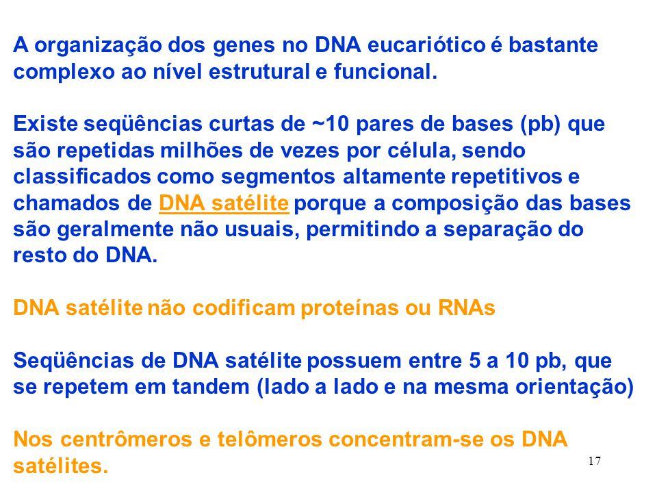 17 A organização dos genes no DNA eucariótico é bastante complexo ao nível estrutural e funcional.