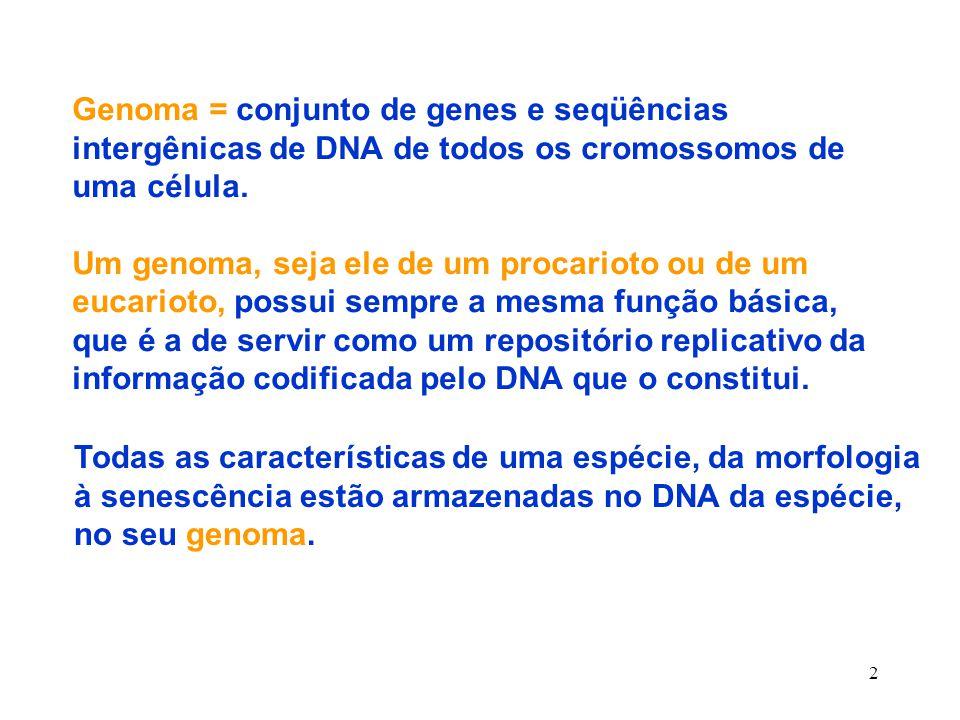 2 Genoma = conjunto de genes e seqüências intergênicas de DNA de todos os cromossomos de uma célula.