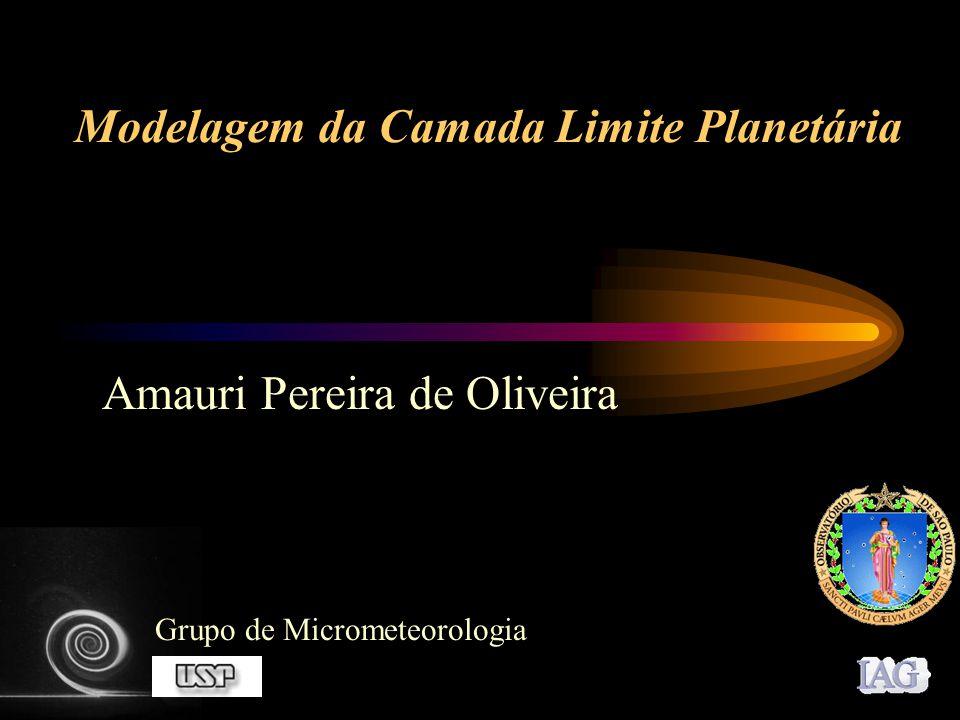 Modelagem da Camada Limite Planetária Amauri Pereira de Oliveira Grupo de Micrometeorologia