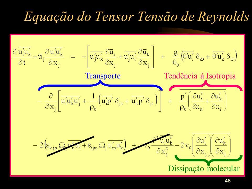 48 Equação do Tensor Tensão de Reynolds Dissipação molecular TransporteTendência à Isotropia
