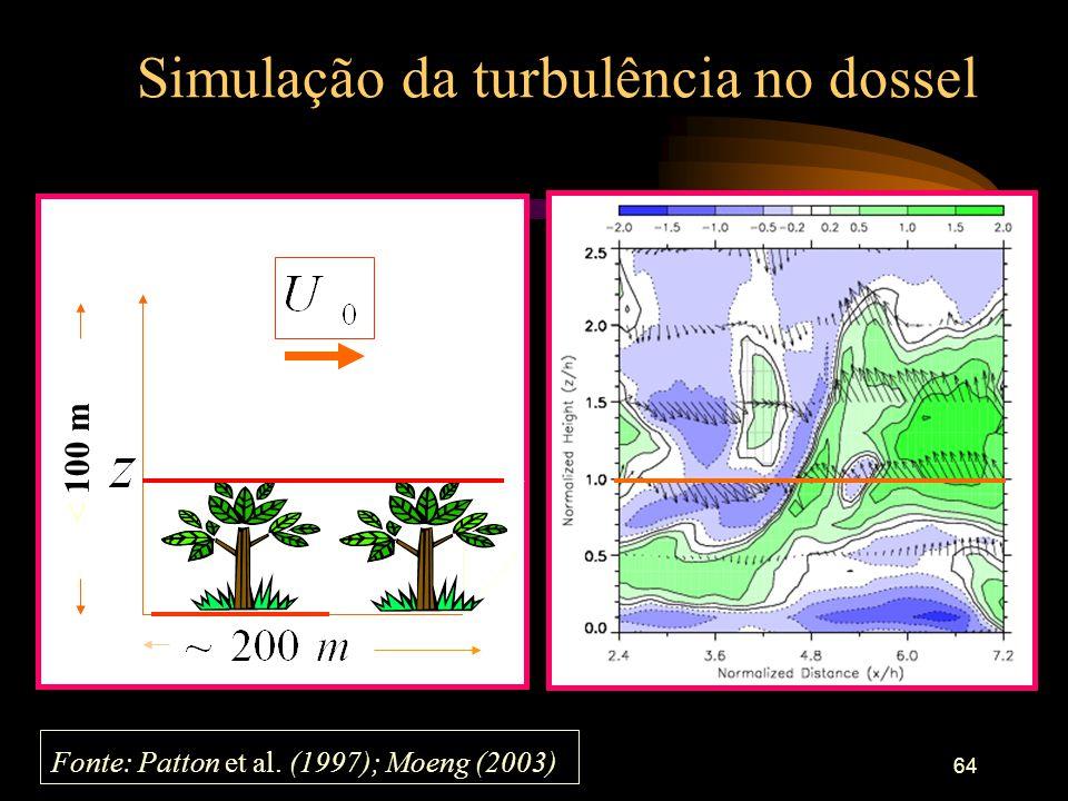 64 Simulação da turbulência no dossel < 100 m Fonte: Patton et al. (1997); Moeng (2003)