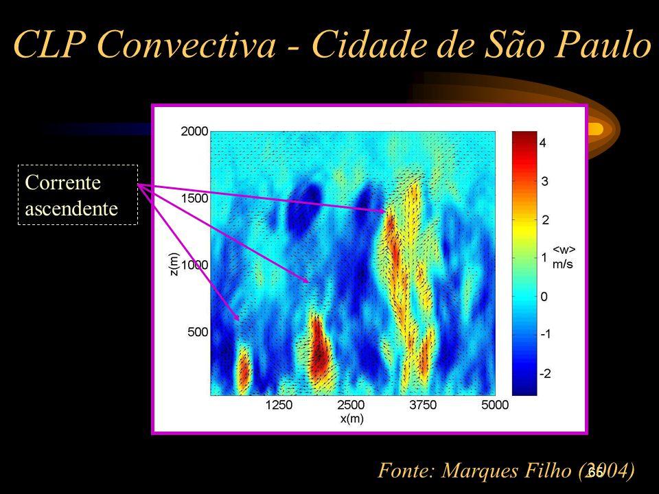 65 CLP Convectiva - Cidade de São Paulo Corrente ascendente Fonte: Marques Filho (2004)