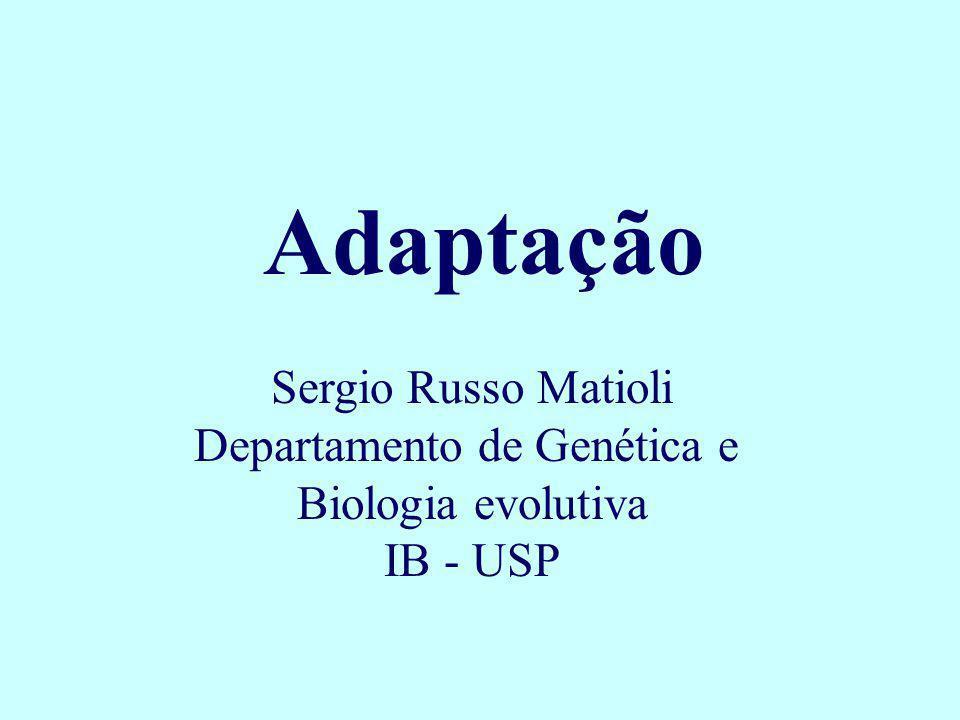 Adaptação Sergio Russo Matioli Departamento de Genética e Biologia evolutiva IB - USP