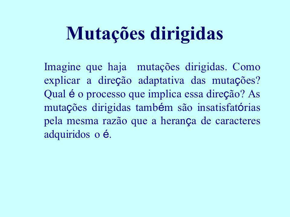 Mutações dirigidas Imagine que haja mutações dirigidas. Como explicar a dire ç ão adaptativa das muta ç ões? Qual é o processo que implica essa dire ç