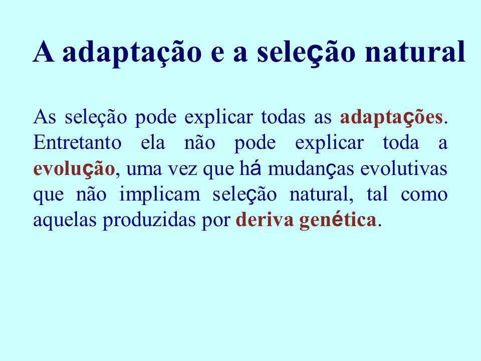 A adaptação e a sele ç ão natural As seleção pode explicar todas as adapta ç ões. Entretanto ela não pode explicar toda a evolu ç ão, uma vez que h á