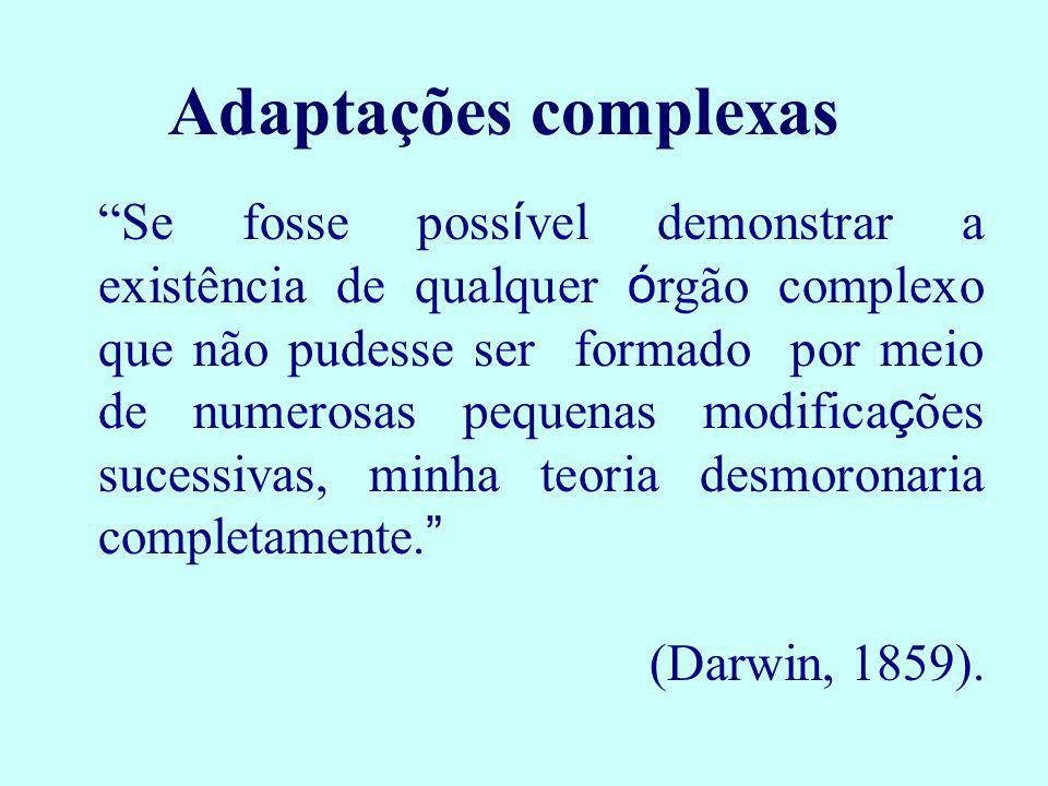 Adaptações complexas Se fosse poss í vel demonstrar a existência de qualquer ó rgão complexo que não pudesse ser formado por meio de numerosas pequena