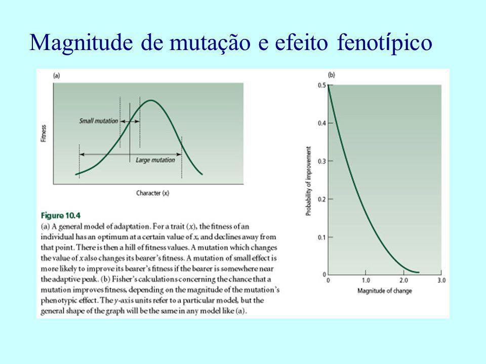 Magnitude de mutação e efeito fenot í pico