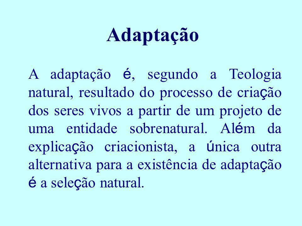 Adaptação A adaptação é, segundo a Teologia natural, resultado do processo de cria ç ão dos seres vivos a partir de um projeto de uma entidade sobrena