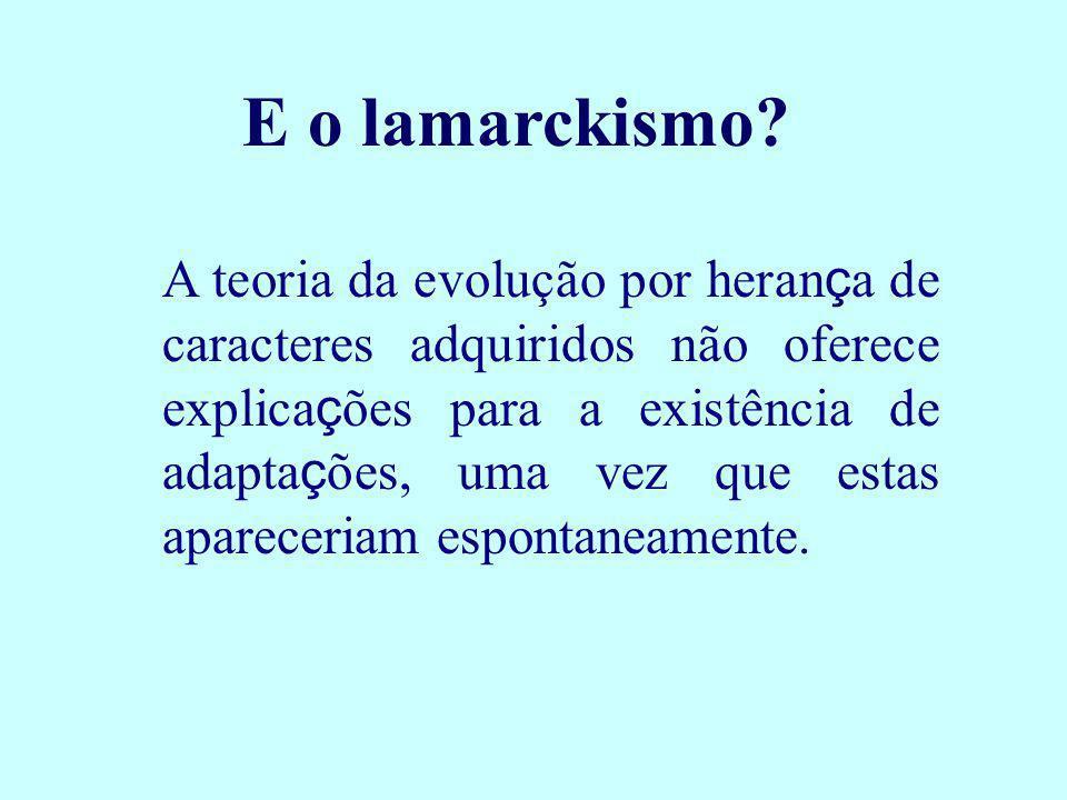 E o lamarckismo? A teoria da evolução por heran ç a de caracteres adquiridos não oferece explica ç ões para a existência de adapta ç ões, uma vez que