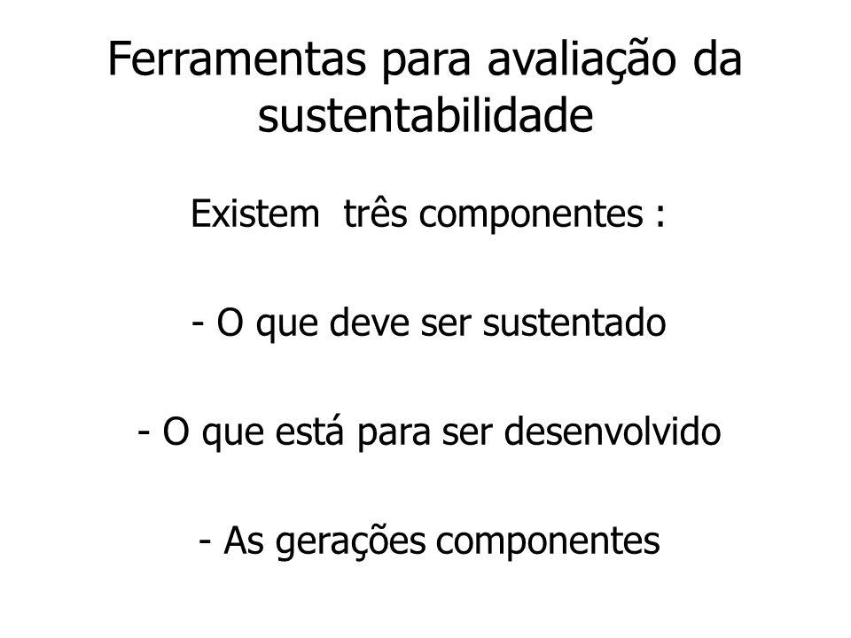 Ferramentas para avaliação da sustentabilidade Existem três componentes : - O que deve ser sustentado - O que está para ser desenvolvido - As gerações