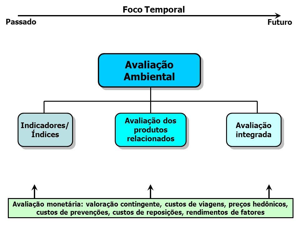 Avaliação Ambiental Avaliação Ambiental Indicadores/ Índices Indicadores/ Índices Avaliação dos produtos relacionados Avaliação dos produtos relaciona