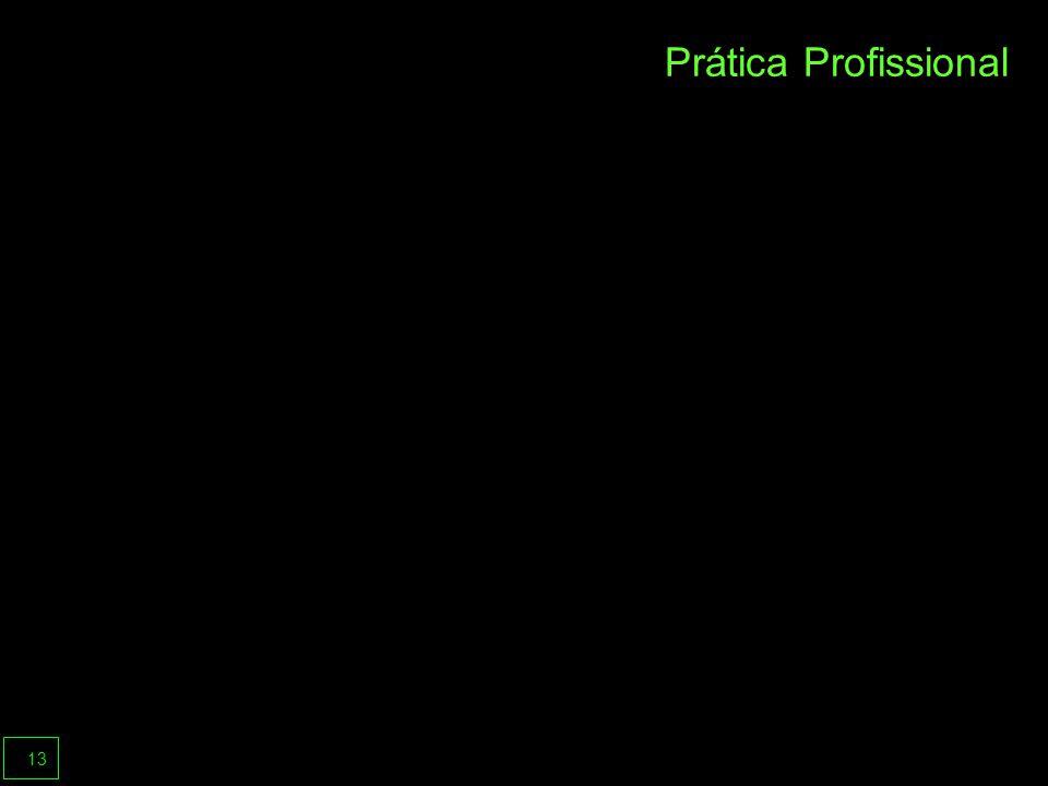 13 Prática Profissional