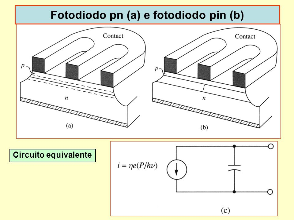 Dispoptic 201017 Fotodiodo pn (a) e fotodiodo pin (b) Circuito equivalente