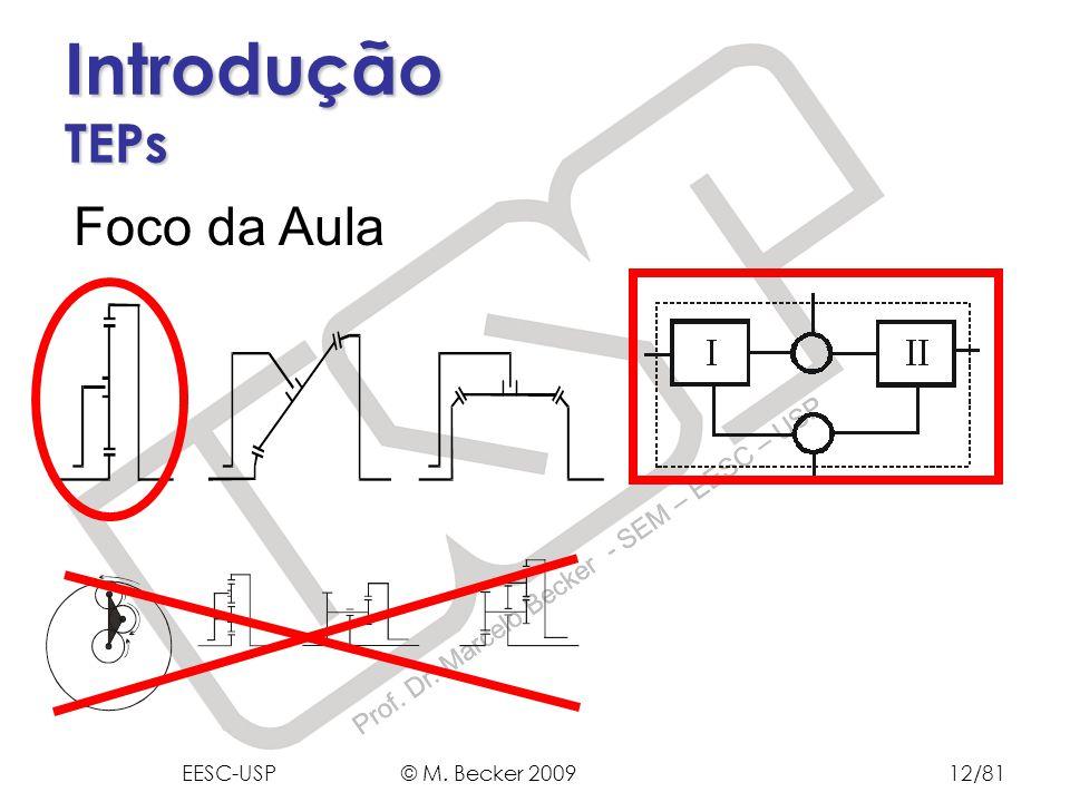 Prof. Dr. Marcelo Becker - SEM – EESC – USP Introdução TEPs Foco da Aula EESC-USP © M. Becker 200912/81