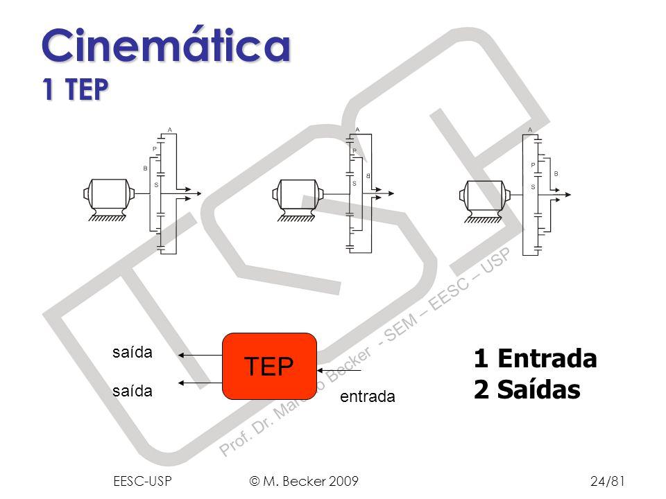 Prof. Dr. Marcelo Becker - SEM – EESC – USP Cinemática 1 TEP 1 Entrada 2 Saídas TEP entrada saída EESC-USP © M. Becker 200924/81