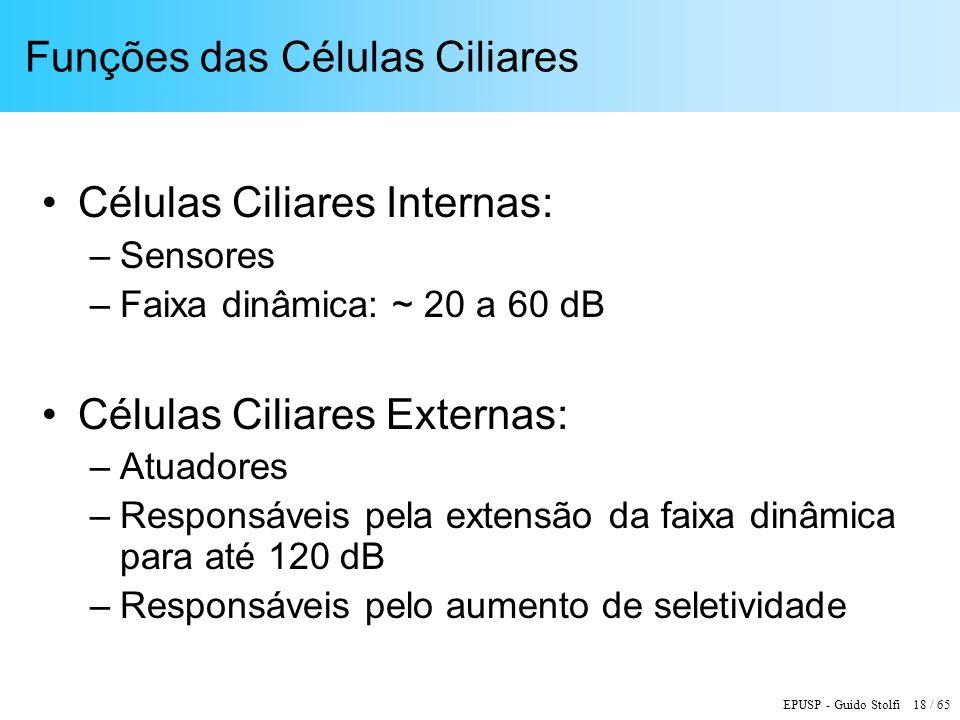 EPUSP - Guido Stolfi 18 / 65 Funções das Células Ciliares Células Ciliares Internas: –Sensores –Faixa dinâmica: ~ 20 a 60 dB Células Ciliares Externas