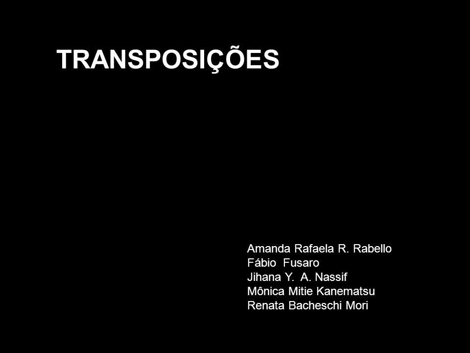 TRANSPOSIÇÕES Amanda Rafaela R.Rabello Fábio Fusaro Jihana Y.