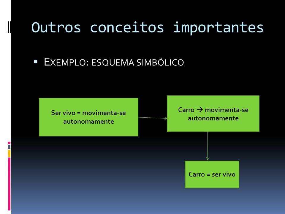 Outros conceitos importantes E XEMPLO : ESQUEMA SIMBÓLICO Ser vivo = movimenta-se autonomamente Carro = ser vivo Carro movimenta-se autonomamente