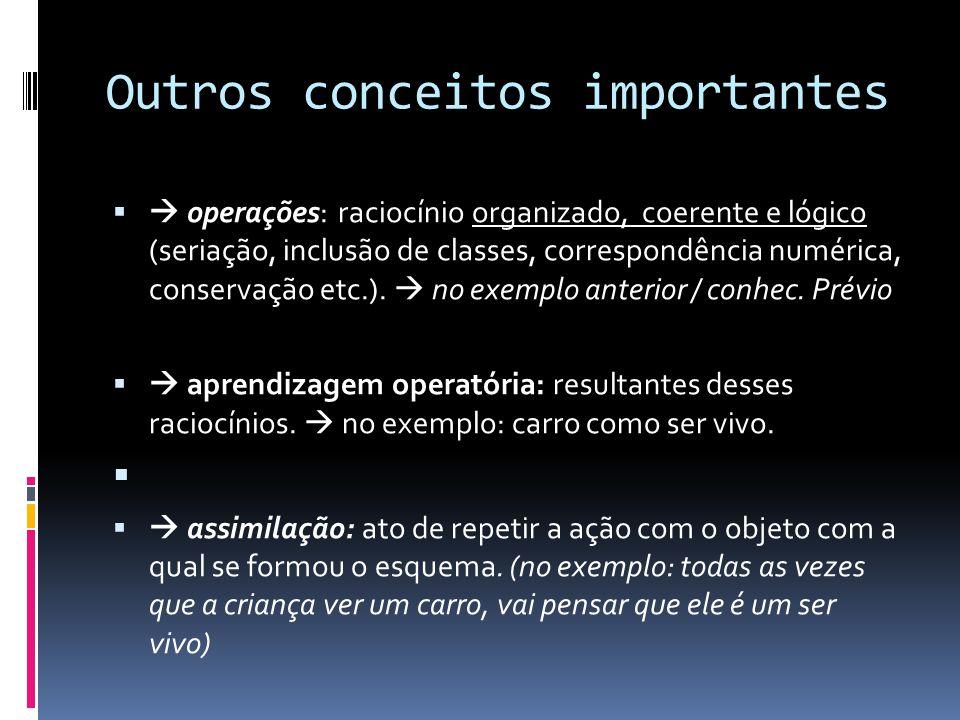 Outros conceitos importantes operações: raciocínio organizado, coerente e lógico (seriação, inclusão de classes, correspondência numérica, conservação etc.).
