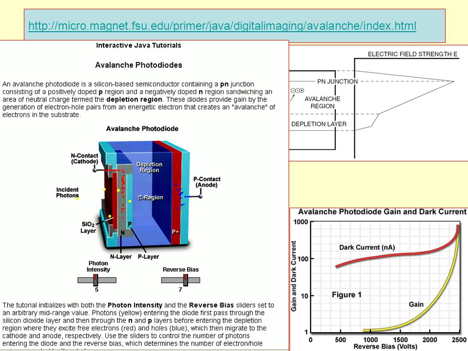 13 http://micro.magnet.fsu.edu/primer/java/digitalimaging/avalanche/index.html dispoptic 2013